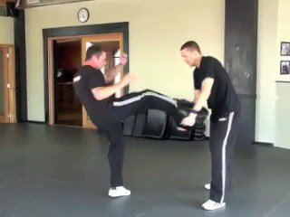 Hand Position During Front Kick